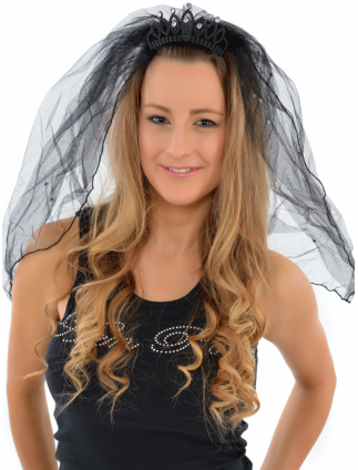 Hen Party Black Mini Tiara And Veil